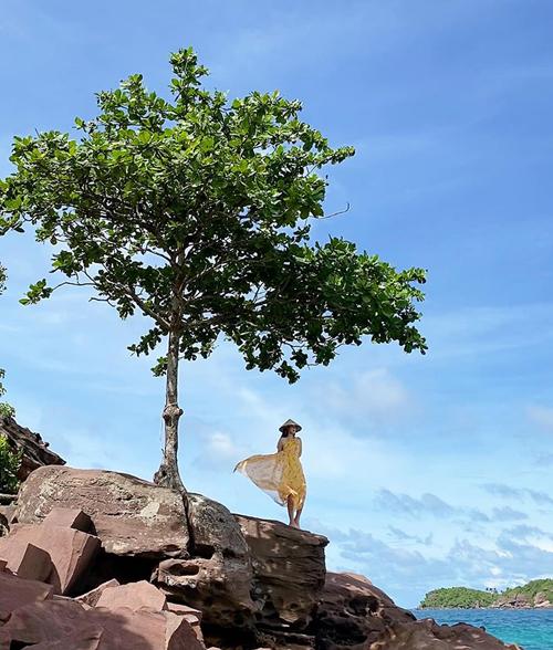 Phương Nga tốn công sức để có bức hình rất lãng mạn bên cây bàng cô đơn cạnh biển.