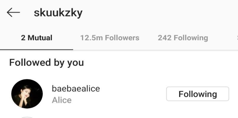 Instagram của chị gái Rosé cũng đang theo dõi Suzy.