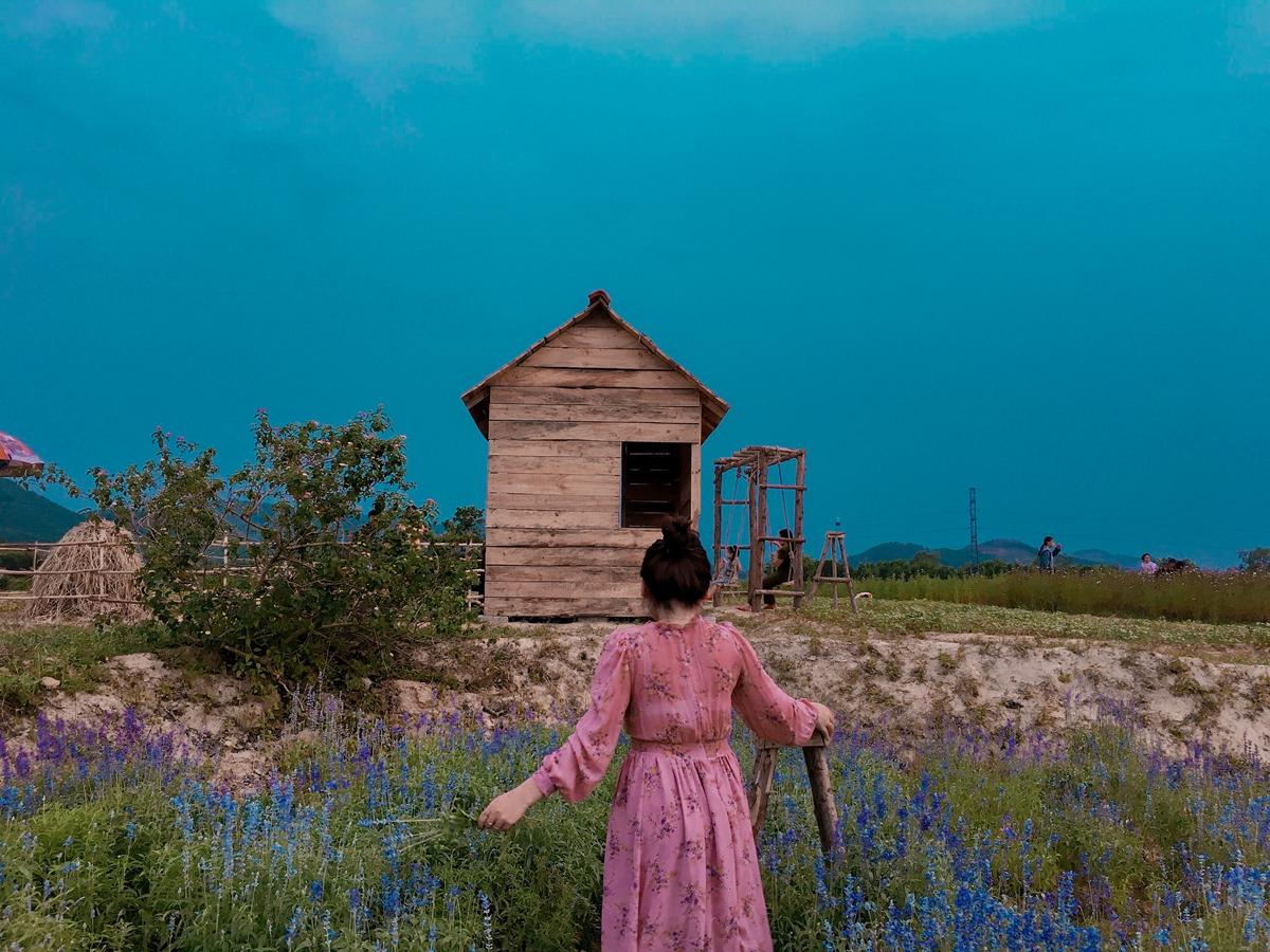 Loạt ảnh Thúy Liên chụp với hoa Nữ hoàng xanh - thuộc họ lavender - được nhiều tín đồ du lịch khen lãng mạn. Điểm check-in này thuộc nông trại Green life, tọa lạc tại làng An Lưu, phường Hương An, Hương Trà, cách thành phố Huế khoảng 5 km.