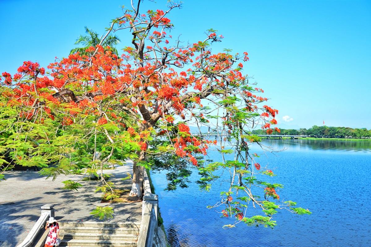 Vẻ nên thơ của cung đường đi bộ bờ Nam sông Hương. Ảnh: Trân Ơi.