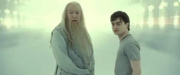 7 thử thách dành cho fan cứng của Harry Potter (2) - 4