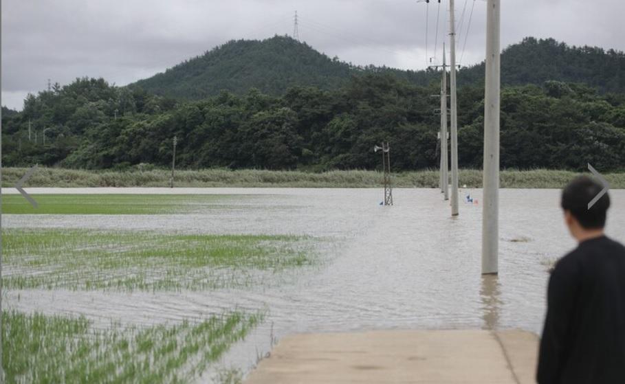 Mưa tiếp tục tại các tỉnh Gangwon và Bắc Gyeongsang. Tại khu vực thủ đô Seoul, tỉnh Incheon và tỉnh Gyeonggi, mưa sẽ giảm dần vào hôm nay (24/7).
