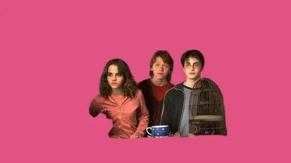 8 thử thách cực dễ dành cho fan cứng của Harry Potter - 12