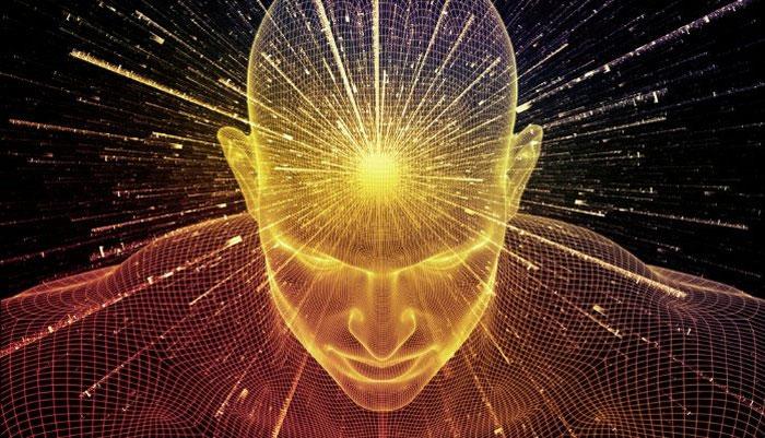 Loài vật nào là biểu tượng của trí tuệ? - 1