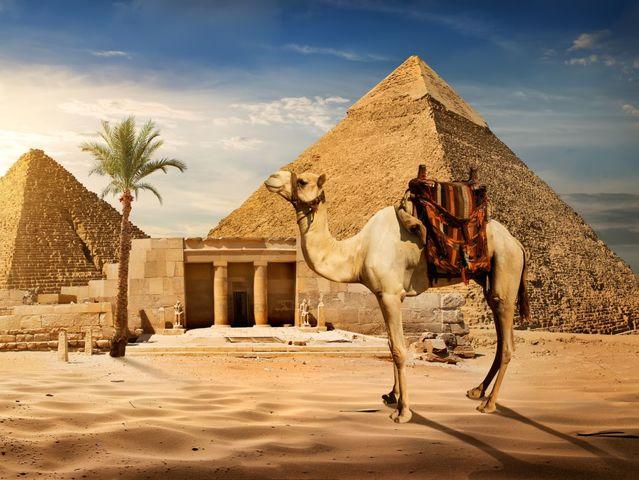Bạn biết bao nhiêu về kim tự tháp Giza? - 1