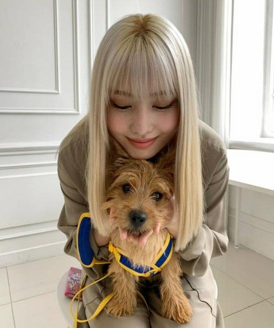 Momo đọ cute với cún cưng.