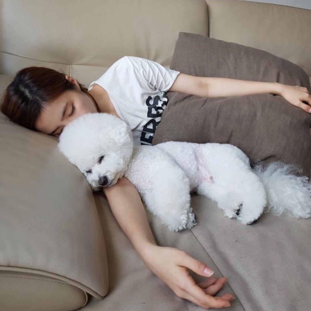 Shin Se Kyung cho cún cưng gối đầu ngủ cực yêu.