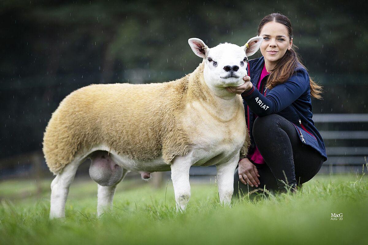 Gia đình nhà Charlie Boden và chú cừu Double Diamond đứng bên tại trang trại ở Cheshire.