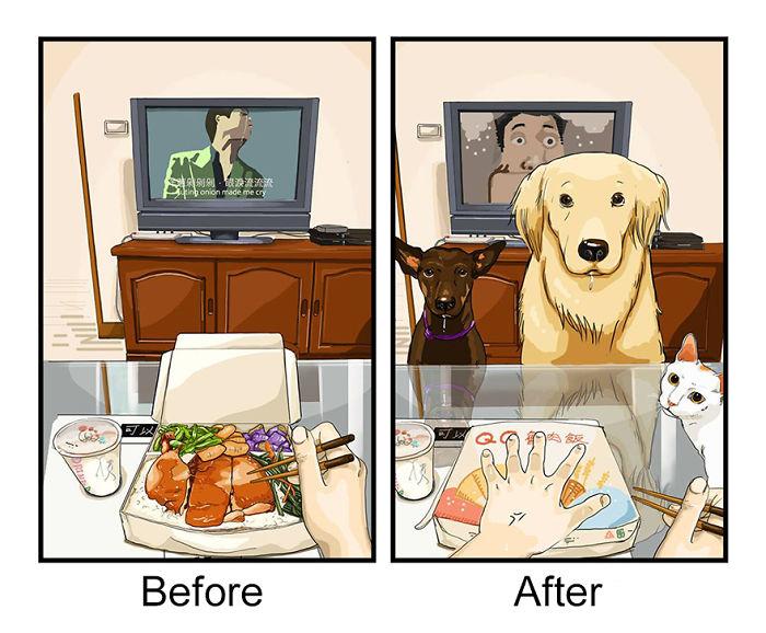 Không còn sự yên bình mỗi khi ăn uống bởi vì pet luôn lượn lờ xung quanh chờ được bạn cho ăn.
