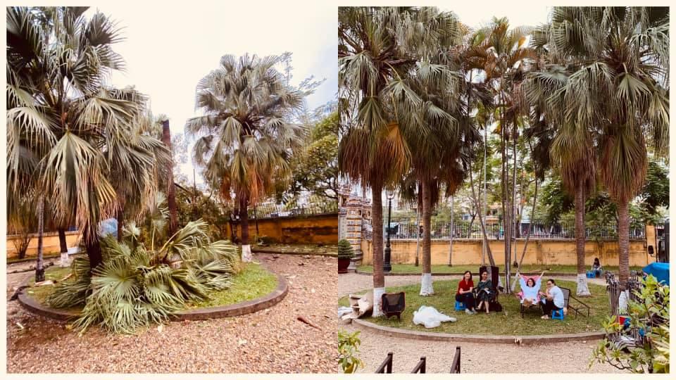 Một khu vực trong bối cảnh phim trước và sau khi bão đổ bộ.