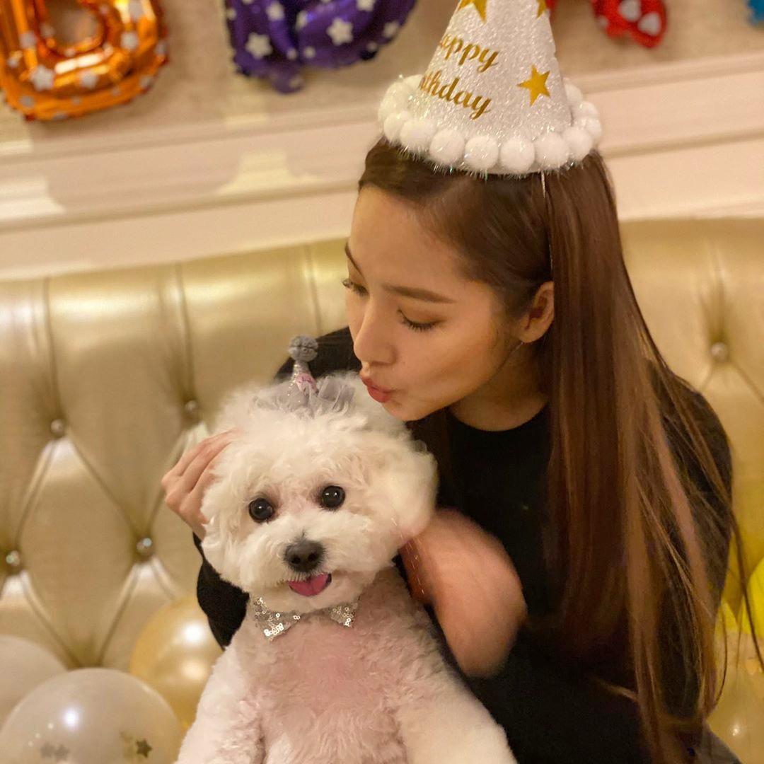 Park Min Young tổ chức sinh nhật linh đình cho cún cưng.