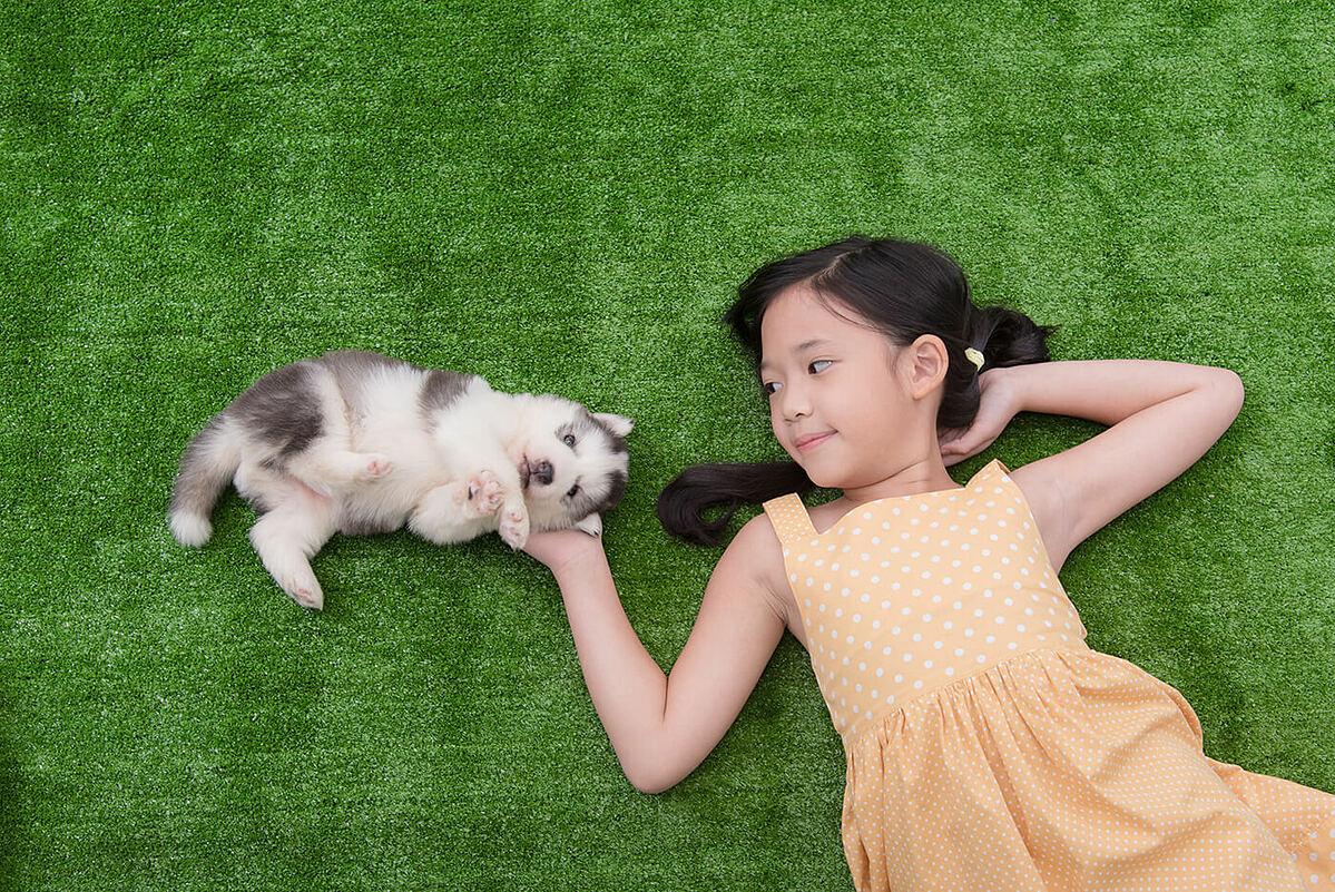 9 cách 'pose dáng' không thể bỏ lỡ với thú cưng - 9