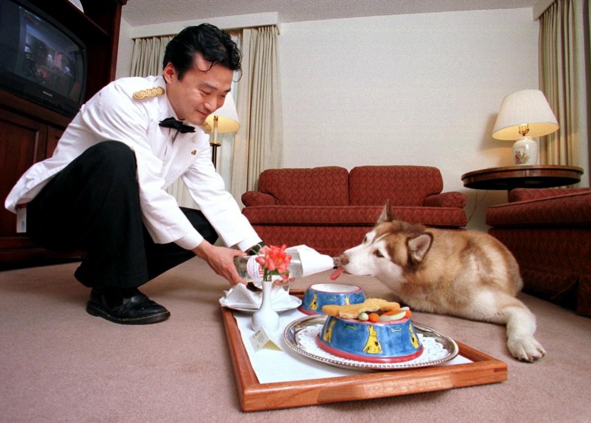 Những người giàu có sẵn sàng chi tiền để thú cưng của họ hưởng thụ những dịch vụ xa xỉ nhất.