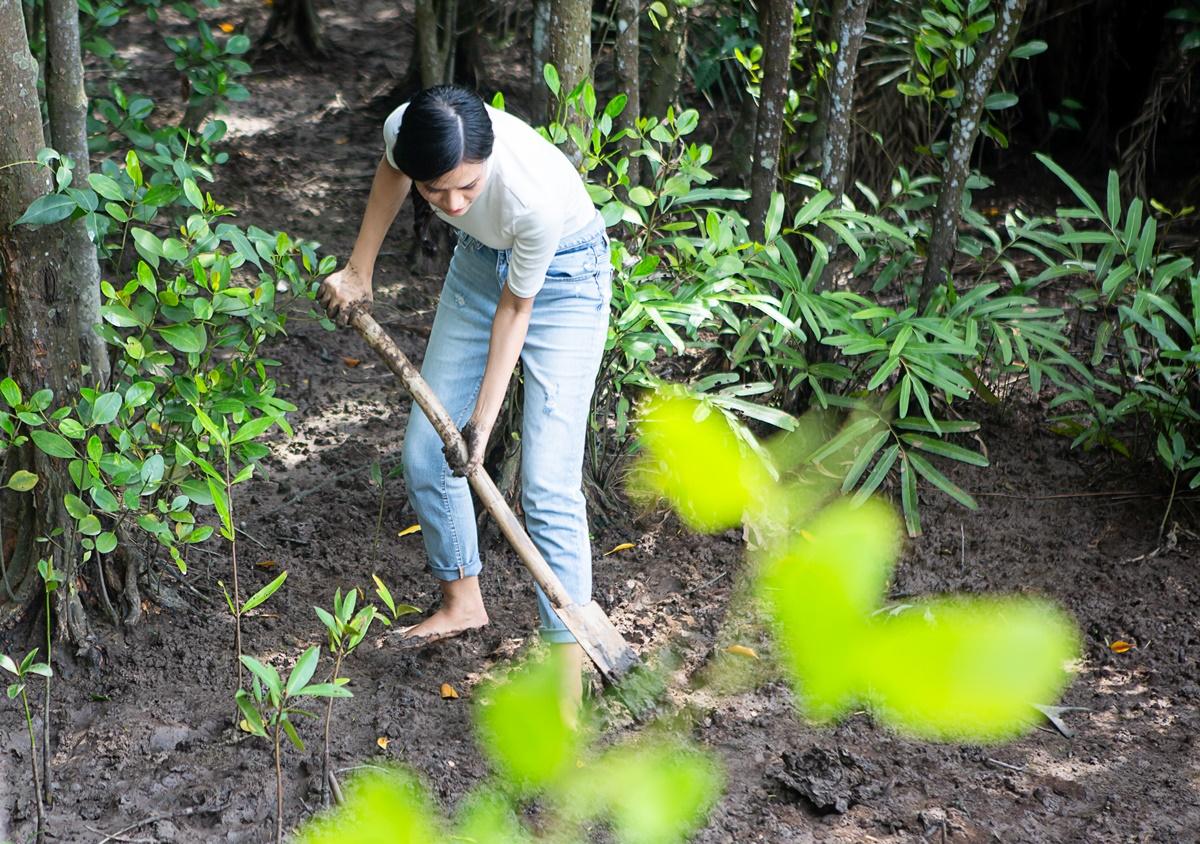 Cô trồng hàng ngàn mầm đước ở một góc rừng.