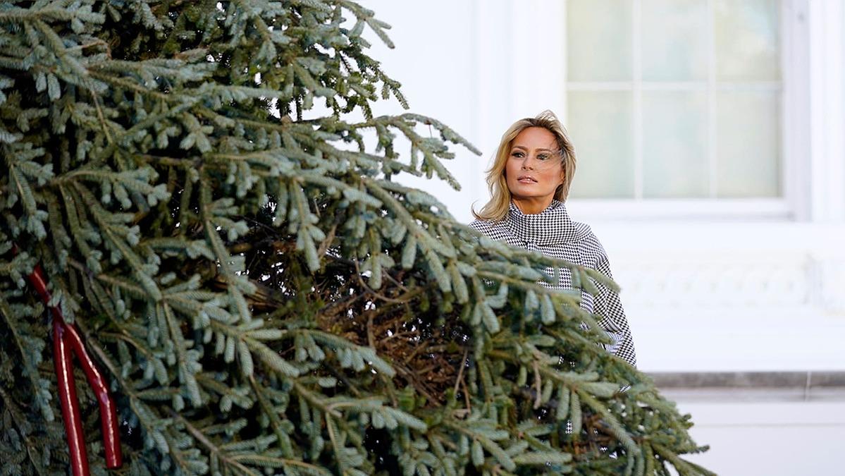 Đệ nhất Phu nhân Melania Trump chụp ảnh bên cạnh cây thông. Ảnh: AP.