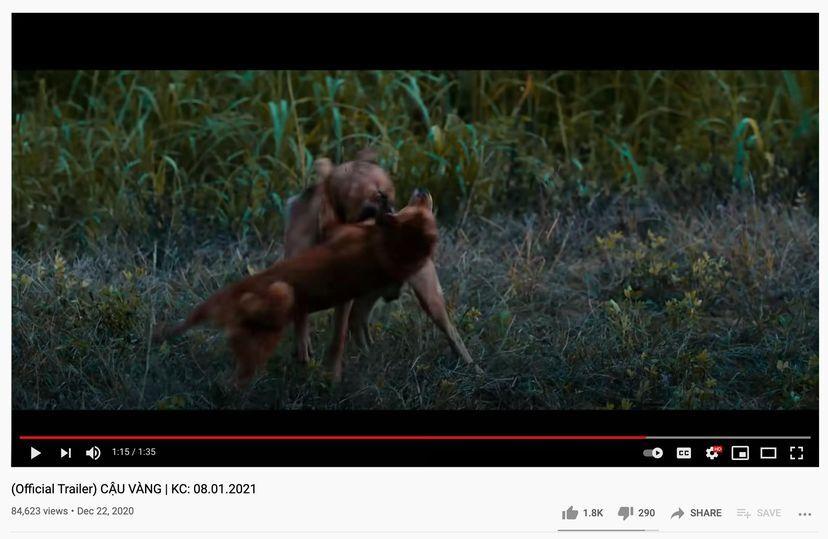 Cảnh xuất hiện trong trailer khiến khán giả phản ứng.