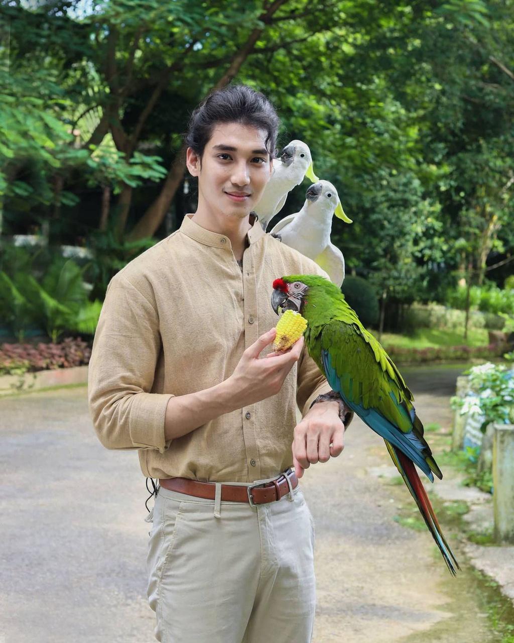 Paing Takhon độc thân, yêu động vật, từ chó mèo đến các loài chim cảnh.
