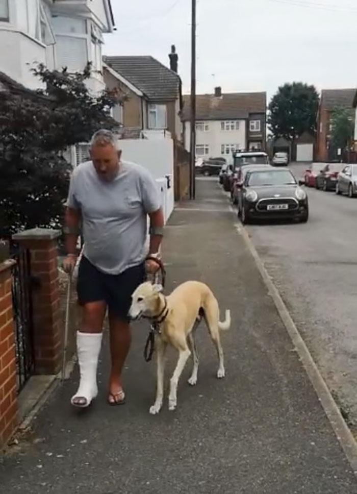 Tốn 500 USD đưa chó què đi viện, người đàn ông phát hiện sự thật bất ngờ