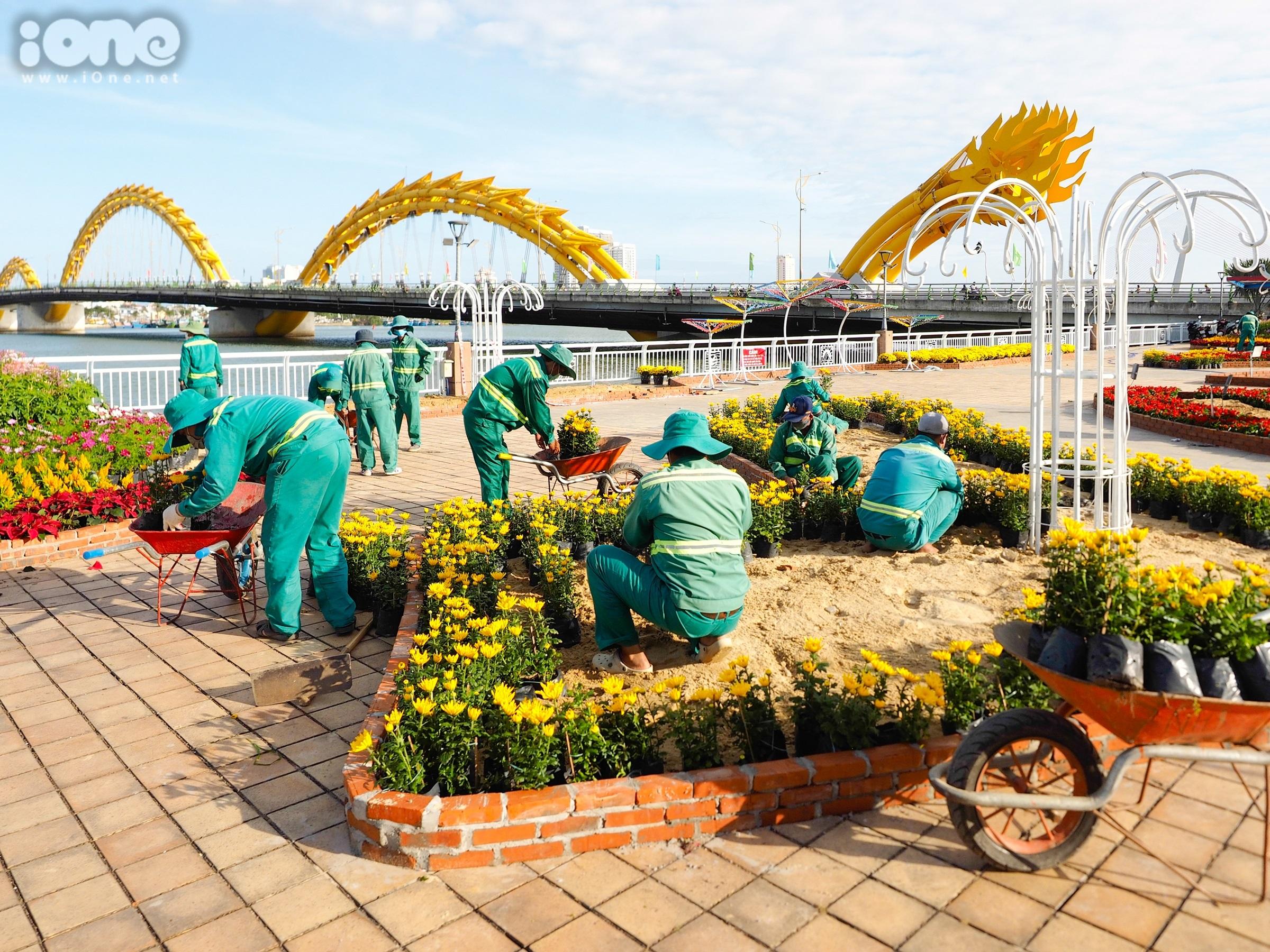 Đường hoa 12 tỷ đồng với nhiều tiểu cảnh hoàng tráng ở Đà Nẵng - 4
