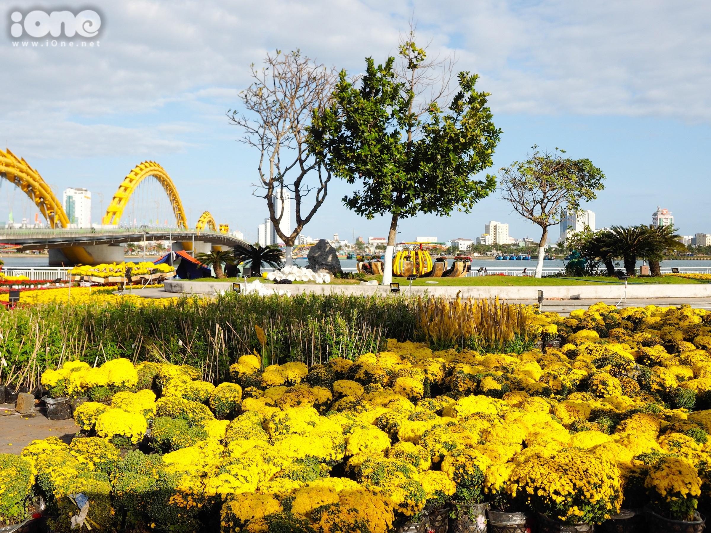 Đường hoa tại Đà Nẵng sẽ khai mạc vào 9/2/2021 (28 tháng Chạp). Đường hoa được mở cửa thường xuyên để người dân đến tham quan cho đến ngày 21/2/2021 (mồng 10 tháng Giêng năm Tân Sửu).