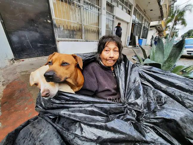 bà Chole sống trong túi rác với những con chó.