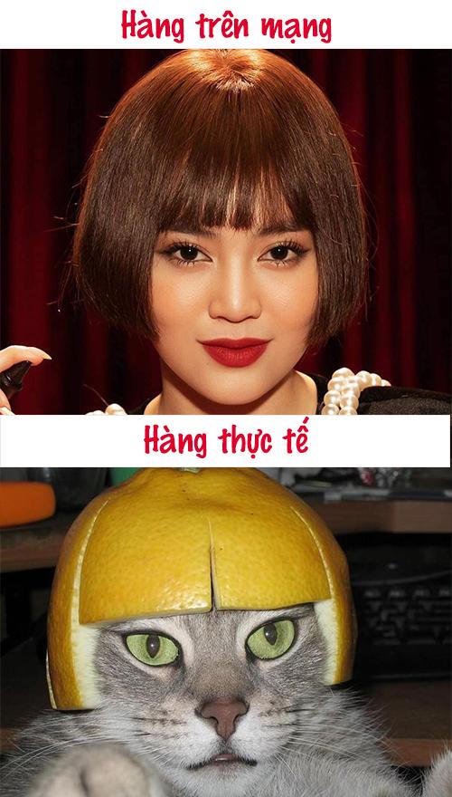 Ảnh chế mái tóc sượng trân của Ninh Dương Lan Ngọc - 6