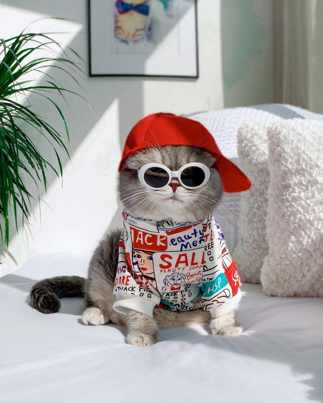 Benson có thể cân được mọi phong cách thời trang, từ sang chảnh, thể thao, cool ngầu đến lịch lãm.