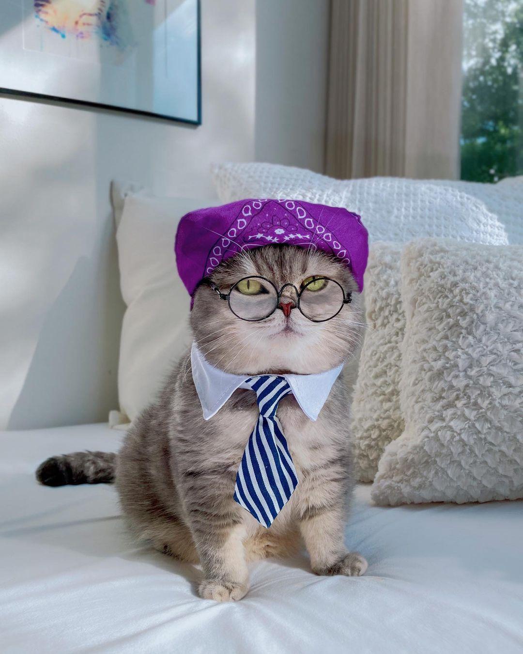 Thắt cà vạt, đội khăn và đeo kính, trông Benson không khác gì nhân viên văn phòng vừa chỉn chu, vừa cá tính.
