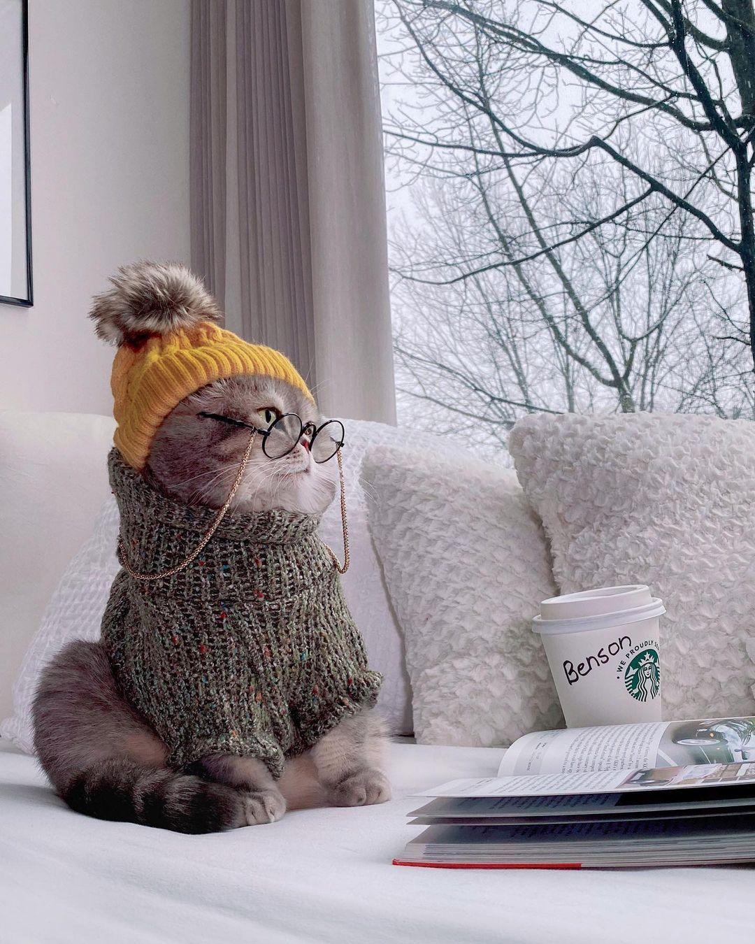 Benson giản dị và sang chảnh với combo đồ len mặc ở nhà, thư giãn bằng thú vui đọc sách và ngắm cảnh.