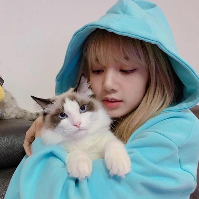 Lisa là mẹ của một tập đoàn mèo hùng hậu gồm Leo, Luca, Lily và Louis. Cả bốn chú mèo đều được Lisa xem như thành viên trong gia đình, thường xuyên được cô đăng tải hình ảnh lên Instagram.
