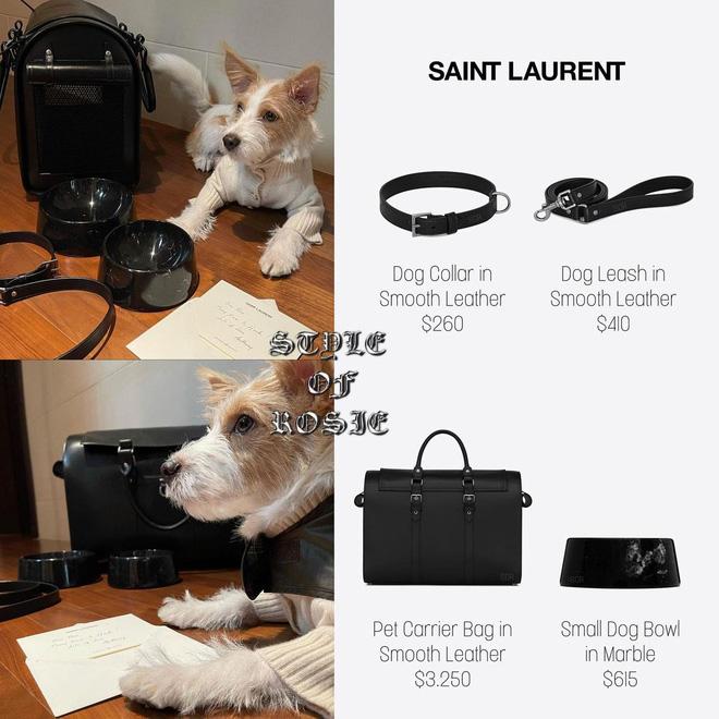 Có cô chủ là đại sứ toàn cầu của Saint Laurent, Hank cũng được thương hiệu này tặng cho những món đồ cao cấp. Không chỉ vậy, giám đốc sáng tạo Anthony Vaccarello còn đích thân viết thư tay cho Rosé và Hank.