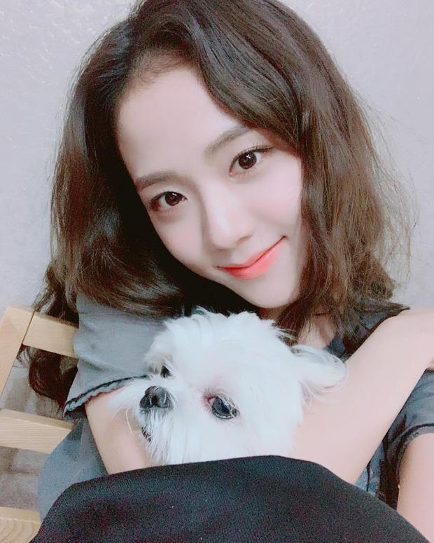 Chú chó Dalgom là nhân vật nổi tiếng trong cộng đồng fan của Black Pink. Là con một nhà Ji Soo nên Dalgom được cô chủ yêu thương, cưng chiều hết mực. Mỗi lần Ji Soo khoe hình cô cùng chú chó đáng yêu với bộ lông trắng muốt, các fan lại rất thích thú. Xứng tầm là đại sứ thương hiệu của Dior, Ji Soo không chỉ được nhà mốt cao cấp ưu ái mà đến cún cưng của cô cũng nhận được những đãi ngộ chẳng kém ngôi sao.