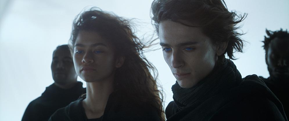 Dune sở hữu dàn diễn viên nổi tiếng như Timothée Chalamet, Zendaya, Jason Momoa,...